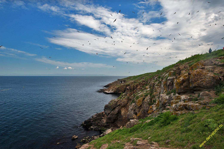 Остров Святой Иван Island Saint Ivan
